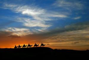 Chinese song:Camel Bell