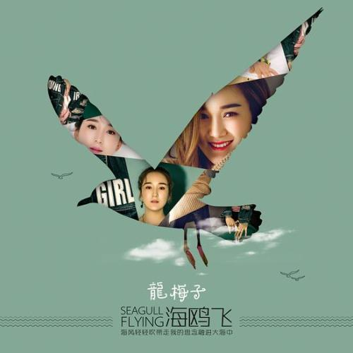 Fei 飞 Fly Lyrics 歌詞 With Pinyin By Long Mei Zi 龙梅子