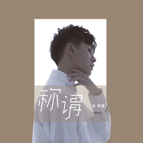 Cheng Wei 称谓 Appellation Lyrics 歌詞 With Pinyin By Zhang Zi Hao 张紫豪