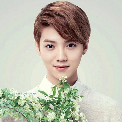 Ti Hui 体会 Nature Lyrics 歌詞 With Pinyin By Lu Han 鹿晗 Lu Han