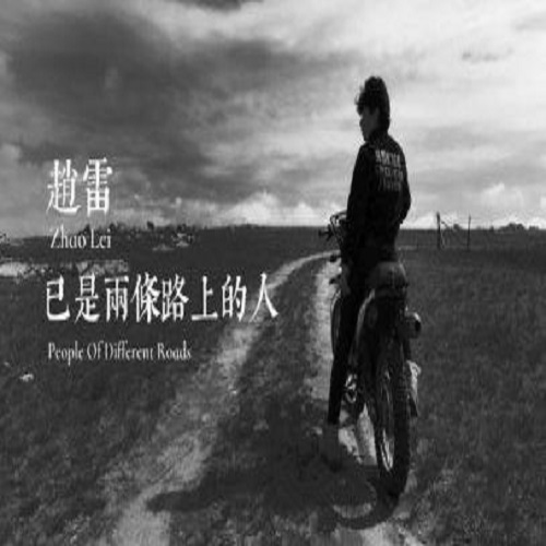 Yi Shi Liang Tiao Lu Shang De Ren 已是两条路上的人 Two Roads Already Lyrics 歌詞 With Pinyin By Zhao Lei 赵雷