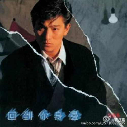 Zhen Zhen Jia Jia 真真假假 Both Real And Sham Lyrics 歌詞 With Pinyin By Liu De Hua 刘德华 Andy Lau Tai Di Luo Bin 泰迪罗宾 Teddy Robin