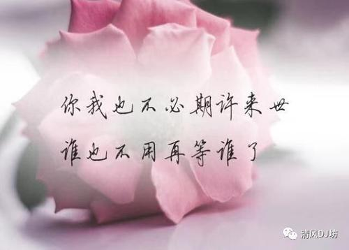 Ai Shou Shang Le 爱受伤了 Love Is Injured Lyrics 歌詞 With Pinyin By Liu Zhe 六哲