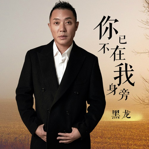 Ni Yi Bu Zai Wo Shen Pang 你已不在我身旁 Lyrics 歌詞 With Pinyin By Hei Long 黑龙