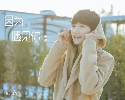 Yin Wei Yu Jian Ni 因为遇见你 Because I Met You Lyrics 歌詞 With Pinyin By Wang Yuan 王源 Roy Wang