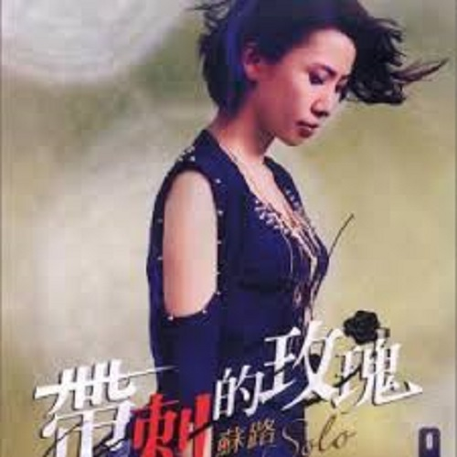 Dai Ci De Mei Gui 带刺的玫瑰 Lyrics 歌詞 With Pinyin By Su Lu 苏路