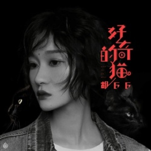 Hao Qi De Mao 好奇的猫 Lyrics 歌詞 With Pinyin By Hu 66 胡66