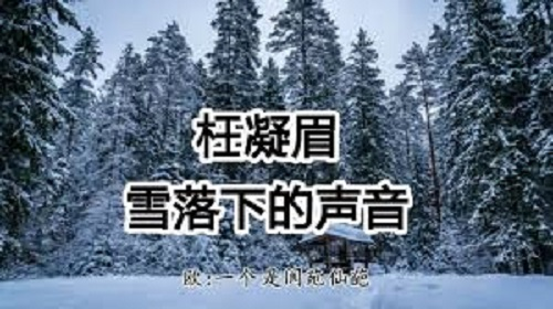 Wang Ning Mei 枉凝眉 Xue Luo Xia De Sheng Yin 雪落下的声音 Lyrics 歌詞 With Pinyin By Ou Yang Na Na 欧阳娜娜 Nana Ou-yang Jiang Meng Jie 蒋梦婕 Guan Xiao Tong 关晓彤 Wang Yuan 王源 Roy