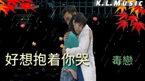 Hao Xiang Bao Zhe Ni Ku 好想抱着你哭 I Want To Hug You And Cry Lyrics 歌詞 With Pinyin By Du Lian 毒恋