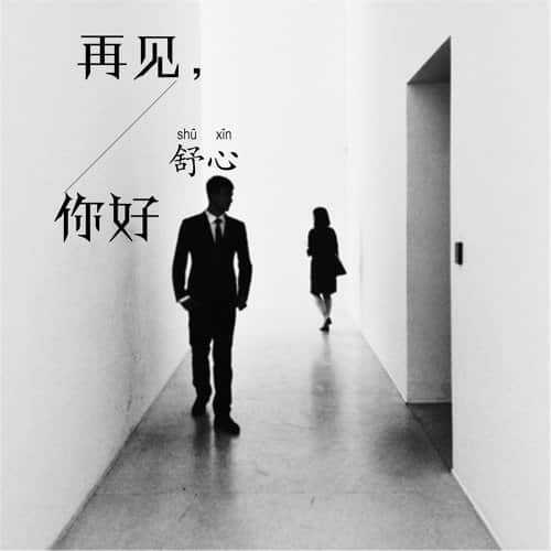 Zai Jian Ni Hao 再见你好 Goodbye Hello Lyrics 歌詞 With Pinyin By Shu Xin 舒心