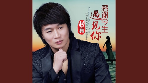 Gan Xie Jin Sheng Yu Jian Ni 感谢今生遇见你 Thank You For Meeting You In This Life Lyrics 歌詞 With Pinyin By Zhao Zhen 赵真