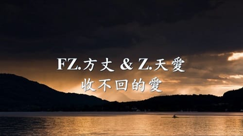 Shou Bu Hui De Ai 收不回的爱 Unrecoverable Love Lyrics 歌詞 With Pinyin By FZ Fang Zhang 方丈 Tian Ai 天爱