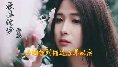 Zui Zhen De Meng 最真的梦 The Most Really Dream Lyrics 歌詞 With Pinyin By Sun Lu 孙露